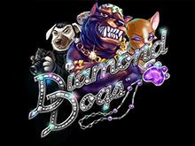 Онлайн аппарат Diamond Dogs в режиме демо
