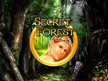 Начать новую игру на автомате Secret Forest