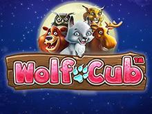 Яркий досуг за популярным автоматом Wolf Cub